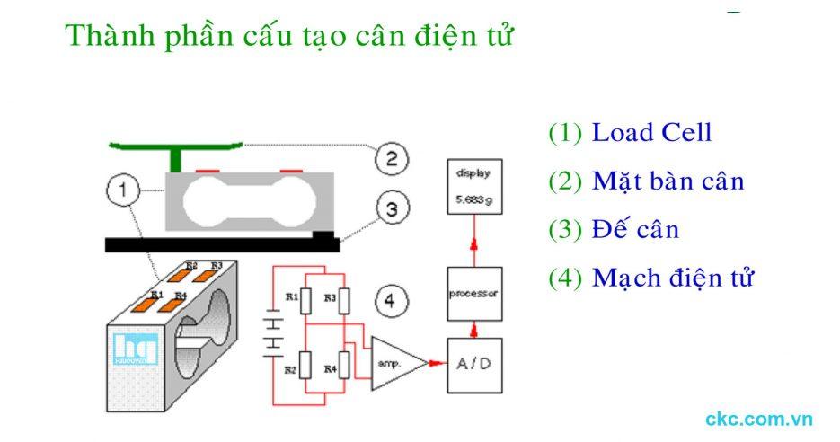 Các bộ phận cấu tạo cân điện tử cơ bản